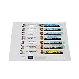 Xerox Premium NeverTear Wristbands, 120 µm, weiß, wasserfest, perforiert, A4-Format, 100 Blatt, 8 Stk./Blatt