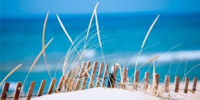Akoestisch fotopaneel, duinen, 1600 x 800 mm