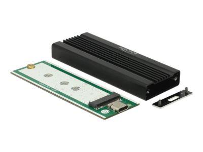 DeLOCK - Speichergehäuse - M.2 Card - USB 3.1 (Gen 2)