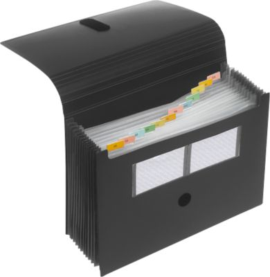 FolderSys A4 Sorteermappen met 12 vakken, uitvouwbaar tot 10 cm, zwart, stuk