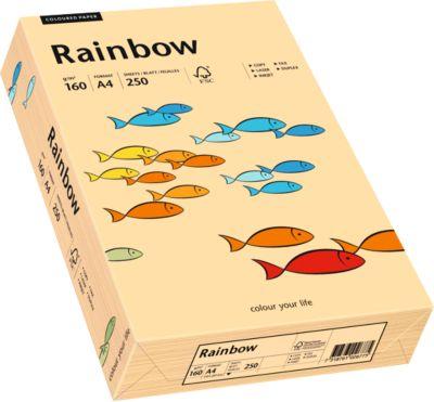Gekleurd kopieerpapier Mondi Regenboog, DIN A4, 160 g/m², zalmroze, 1 verpakking = 250 vel