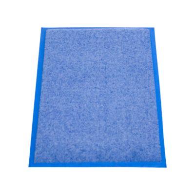 Inloopmat Eazycare Pro, 400 x 600 mm, blauw