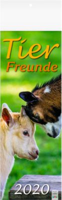 Kalender Tierfreunde