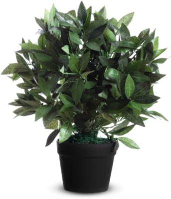 kunstplanten PAPERFLOW, gemaakt van PE, groen, incl. kunststof pot, laurierboom, 500 mm