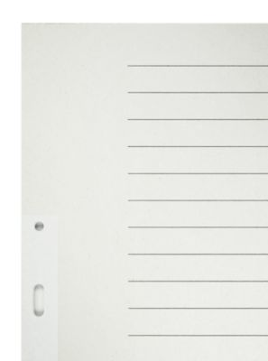 LEITZ® Papier-Register, A4, für Hängeordner, blanko (20 Blätter), Nr. 6096