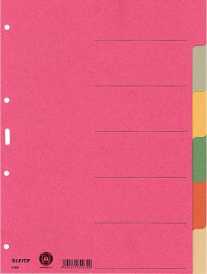 LEITZ® Register Blanko, 6 Taben, zur freien Verwendung, einzeln