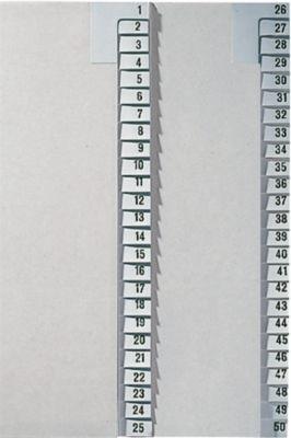 LEITZ® Registerserie 1-25, Zahlenregister, grau