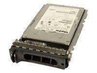 Origin Storage Nearline - Festplatte - 2 TB - SAS