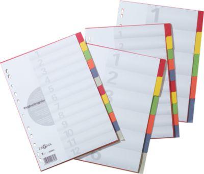 PAGNA Kartonregister mit Deckblatt, zur freien Verwendung, 12 Blätter, 6-farbig
