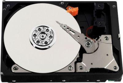 Santec Festplatte HDD-2000HV