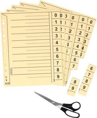 SCHÄFER SHOP Trennblätter, DIN A4-Format, Linienaufdruck, 100 Stück, mit Lochrand-Verstärkung