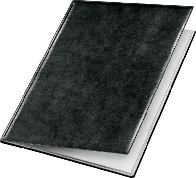 VELOFLEX Sichtbuch Exquisit, für DIN A4, 10 Hüllen, schwarz