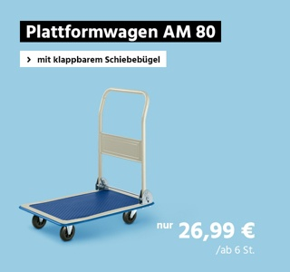 Plattformwagen AM 80